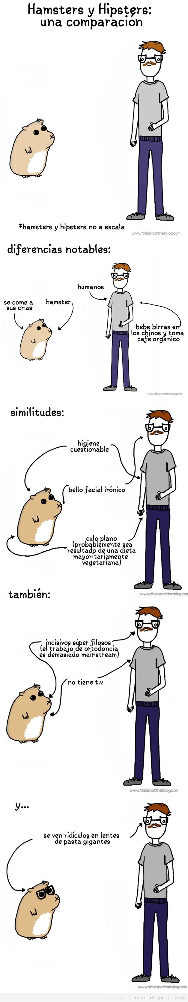 Humor gráfico, la comparación entre hamster y hipster