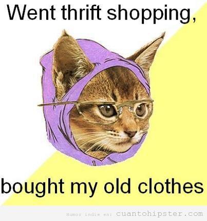 Meme de la gata hipster que compra en las tiendas de segunda mano
