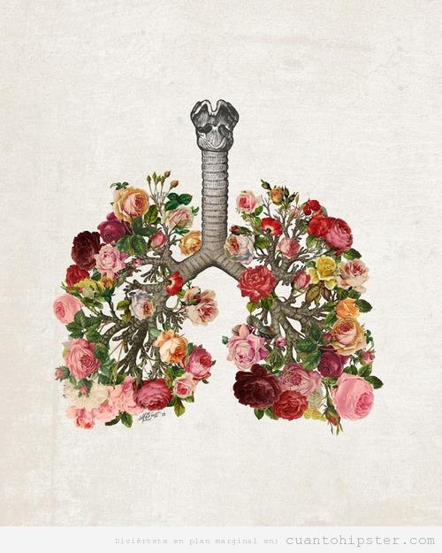 Los Pulmones De Un A Indie Que No Fuma Cuanto Hipster