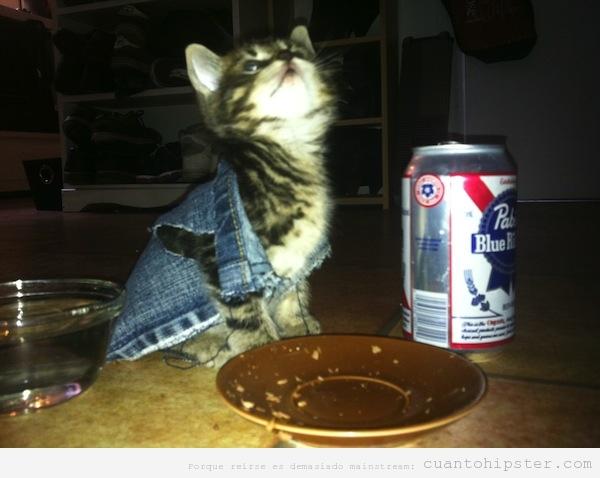Gasto Hipster bebiendo cerveza Pabst Blue Ribbon