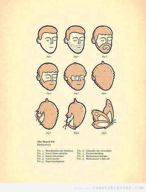 Humor gráfico, de hipster  con barba a mariposa
