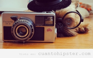 Fotos hipsters, Personajes, Buddy, Toy Story, Selfie, Bigote, Humor, Muñeco