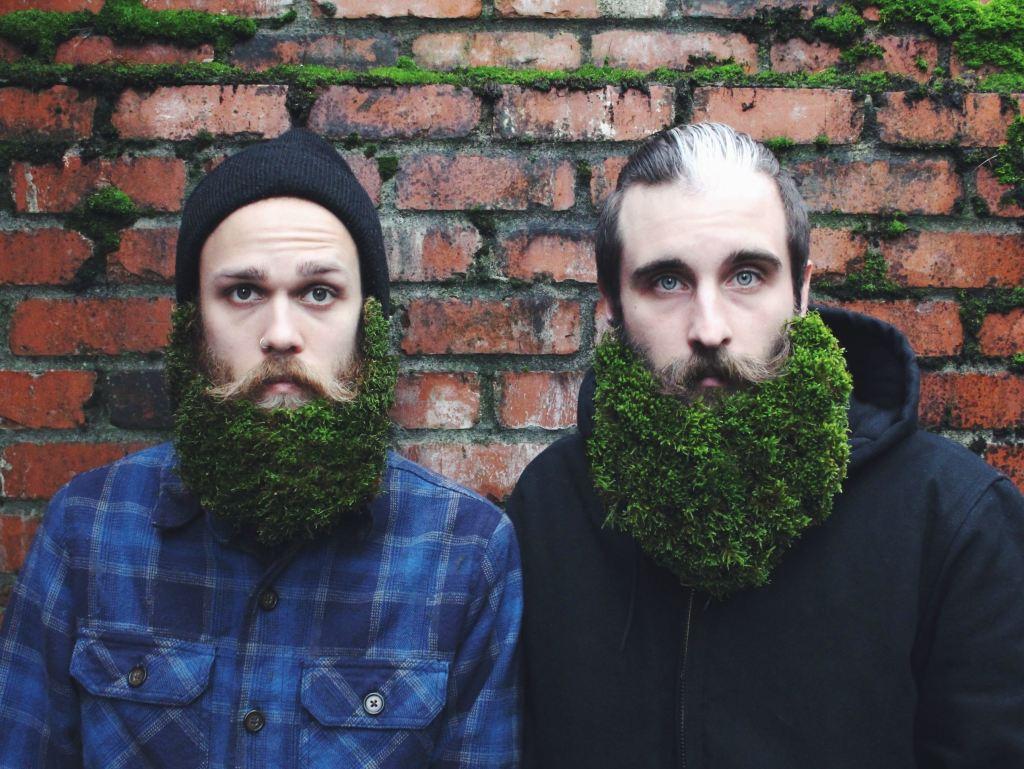 Dos hipsters con barbas llenas de musgo