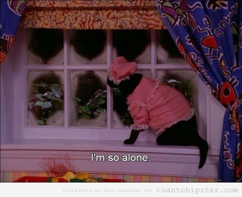 Foto graciosa gato en pijama en la ventana, serie de los 90