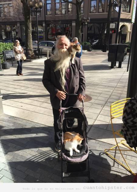 Señor mayor con barba hipster y gatos en un carrito