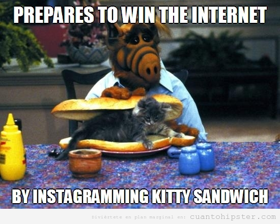 Foto de Alf en Instagram comiendo un sandwich de gato
