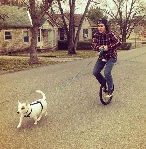 Perro paseando a un hipster en bicicleta de una rueda
