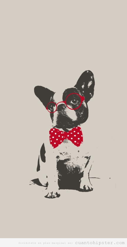 Dibujo bulldog francés con gafas y pajarita