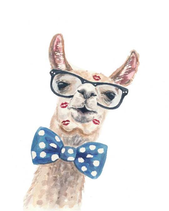 Ilustración de una llama con look hipster