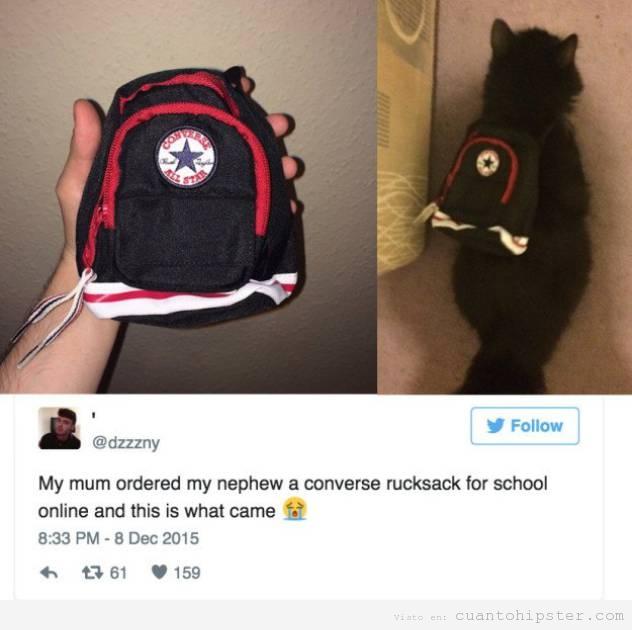 Foto graciosa mochila Converse pequeña para el gato