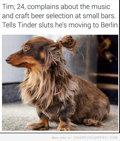 Perro hipster con moño